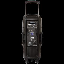 "SONO PORTABLE AUTONOME 2 x 10""/25CM 600W AVEC USB, SD, VOX, BLUETOOTH & 2 MICROS VHF"